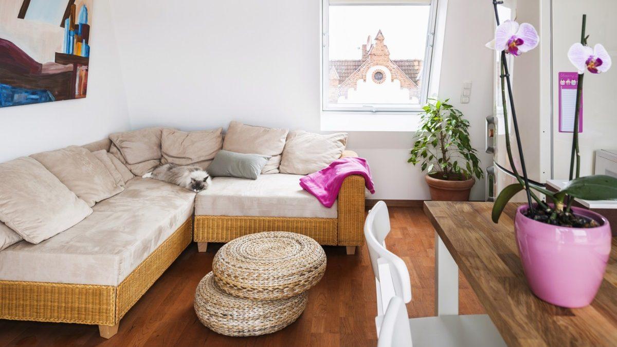 Der Wohnraum im Dachgeschoss der rechten Haushälfte